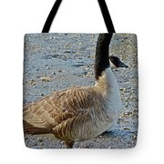Two Heads Are Better Tote Bag