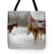 Two Horses In Winter Tote Bag