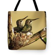 Two Hummingbird Babies In A Nest Tote Bag