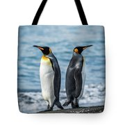 Two King Penguins Facing In Opposite Directions Tote Bag