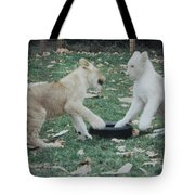 Two Lion Cubs Playing Tote Bag