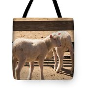 Two Little Lambs. Tote Bag