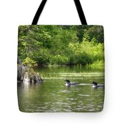 Two Loons Near Old Stump Tote Bag