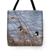 Two Mallards Tote Bag