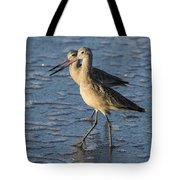 Two Marbled Godwits Tote Bag