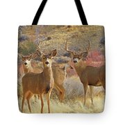 Two Men And A Lady Tote Bag