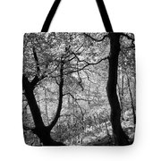 Two Monochrome Tress Tote Bag