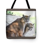 Two Mountain Lions Tote Bag