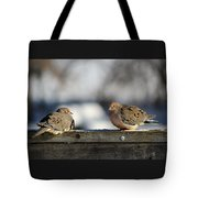 Two Mourning Doves Tote Bag
