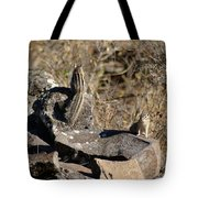 Two Munks On The Rocks Tote Bag