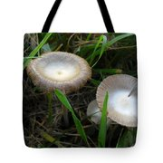 Two Mushrooms In Grass Tote Bag