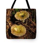 Two Mushrooms Tote Bag