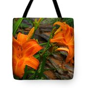 Two Orange Daylilies Tote Bag