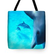 Two Pairs Of Dolphins Tote Bag