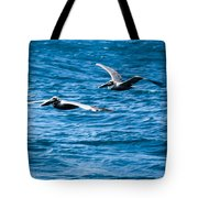 Two Pelicans Flying Tote Bag