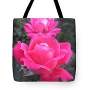 Two Pink Double Roses Tote Bag