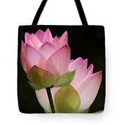 Two Pink Lotus Tote Bag