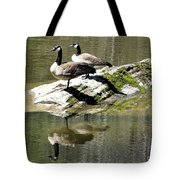Two Plus Two Tote Bag
