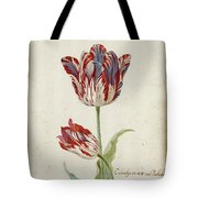 Two Red And White Tulips. Colombijn And Wit Van Poelenburg Tote Bag