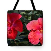 Two Red Hibiscus With Border Tote Bag