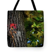 Two Red Leaves Tote Bag