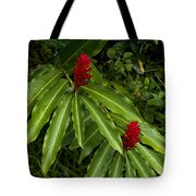 Two Red Tropical Flowers Blooming Tote Bag