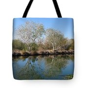 Two Reflected Tote Bag