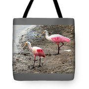 Two Roseate Spoonbills Tote Bag