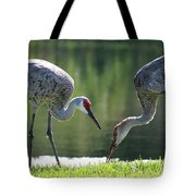 Two Sandhills By The Water Tote Bag