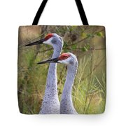 Two Sandhills In Green Tote Bag