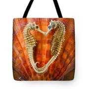 Two Seahorses On Seashell Tote Bag