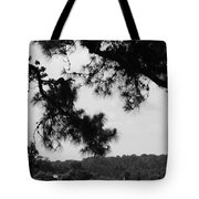 Two Ships That Pass... Tote Bag