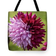 Two Sides Of Dahlia  Tote Bag