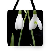 Two Snow Drops Tote Bag