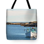 Two Sons Tote Bag