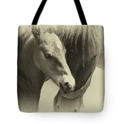 Two Souls, One Heart Tote Bag