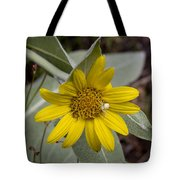 Two Spiders Tote Bag by Kenneth Hadlock