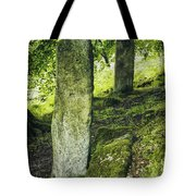 Two Standing Stones Tote Bag