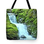 Two Steps Down Tote Bag