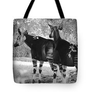 Two Stipers In Black And White Tote Bag