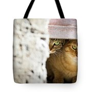 Two Stray Cats Tote Bag