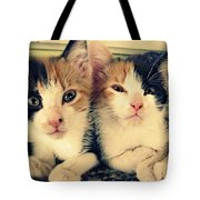 Two Tabby Cat Kittens Tote Bag