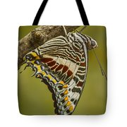 Two Tailed Pasha Butterfly Tote Bag