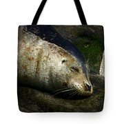 Two Tone Seal Tote Bag