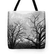 Two Trees Flatirons Boulder Colorado Tote Bag
