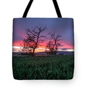 Two Trees In A Purple Sunset Tote Bag