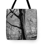 Two Trees In Spring - Mono Tote Bag