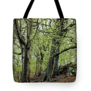 Two Trees In Springtime Tote Bag