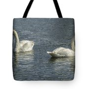 Two Trumpeter Swans At Oxbow Bend Tote Bag