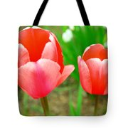 Two Tulips In Bloom  Tote Bag